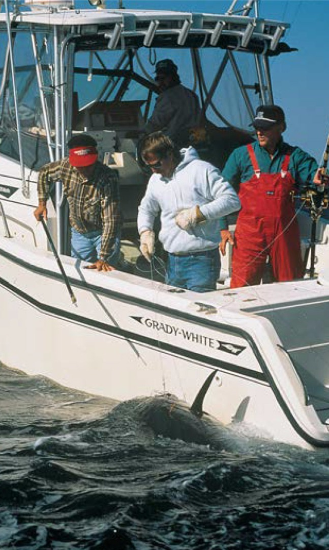 Grady-White boats and employees support conservation efforts.