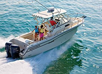 The Chesapeake 290.