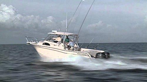 <em>300</em> on the water